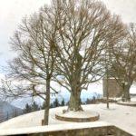 Sich sammeln. (Motiv: Mont Sainte-Odile, Foto: Morrien)